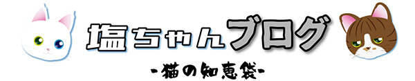 塩ちゃんブログ【猫の知恵袋】