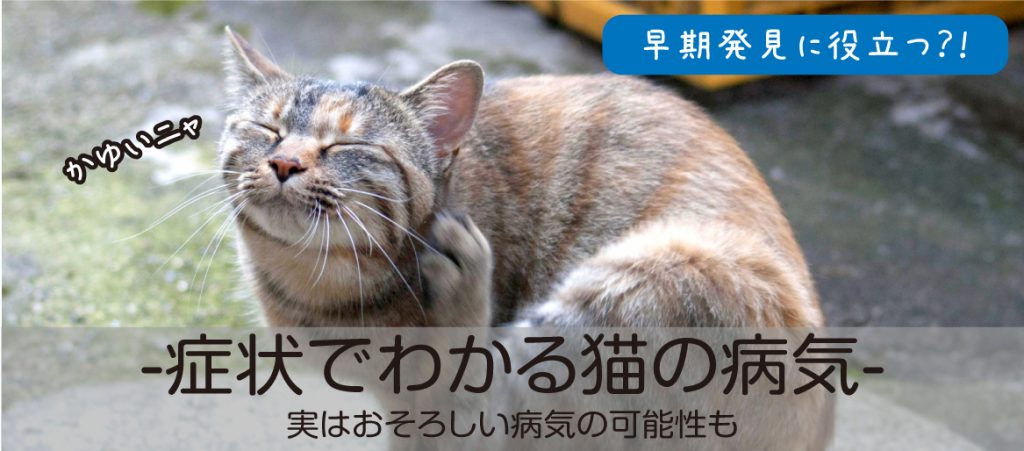 症状でわかる猫の病気