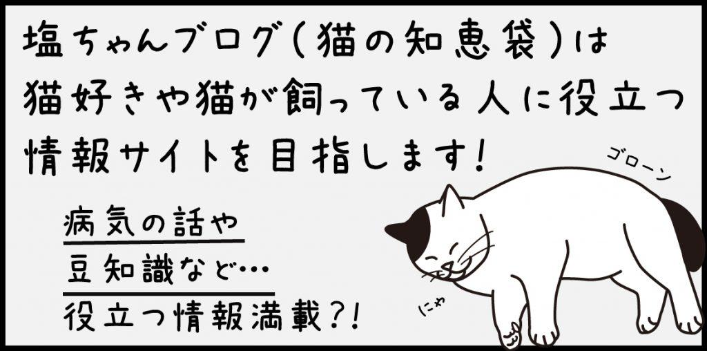 猫の豆知識