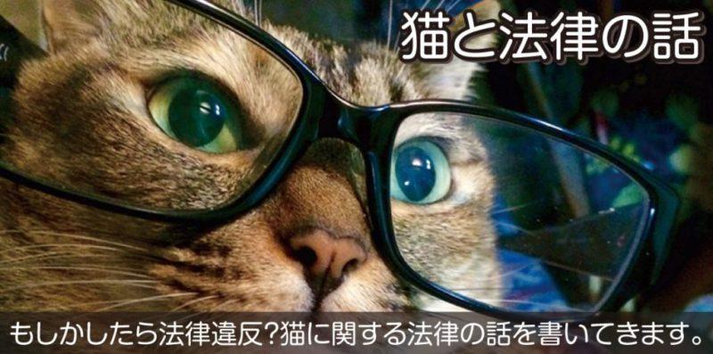 猫と法律の話